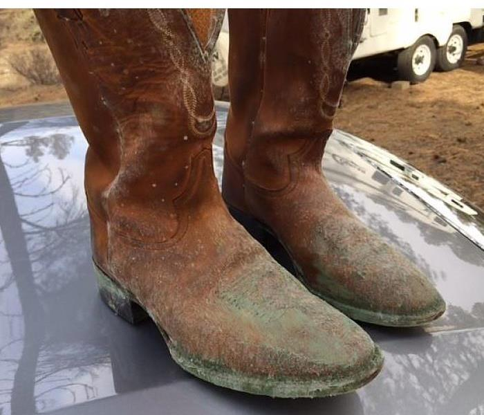 Salvaging Moldy Boots Before