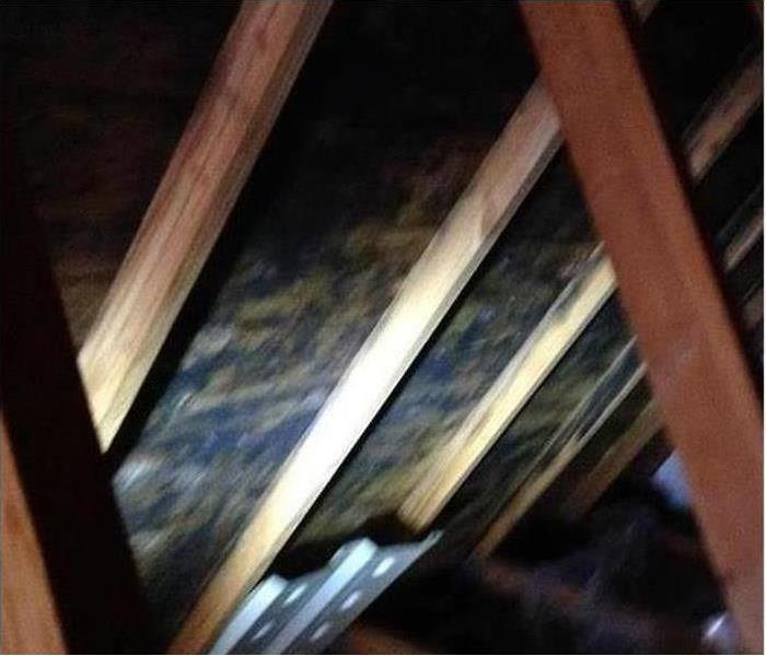 Mold Damage – Durango Home Before