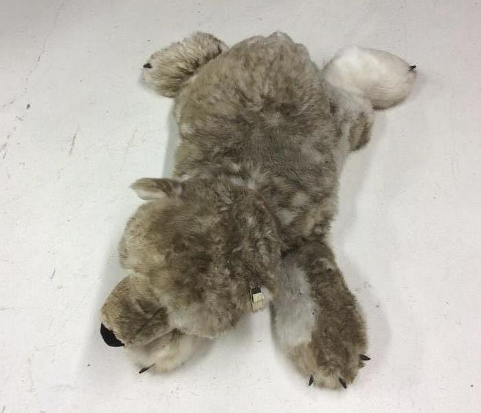 Smoke Damaged Stuffed Bear in Pagosa Springs, CO Before