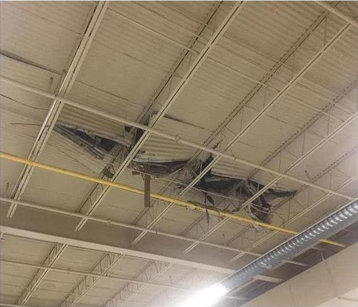 Storm Winds Knock Tree Through Gymnasium Roof