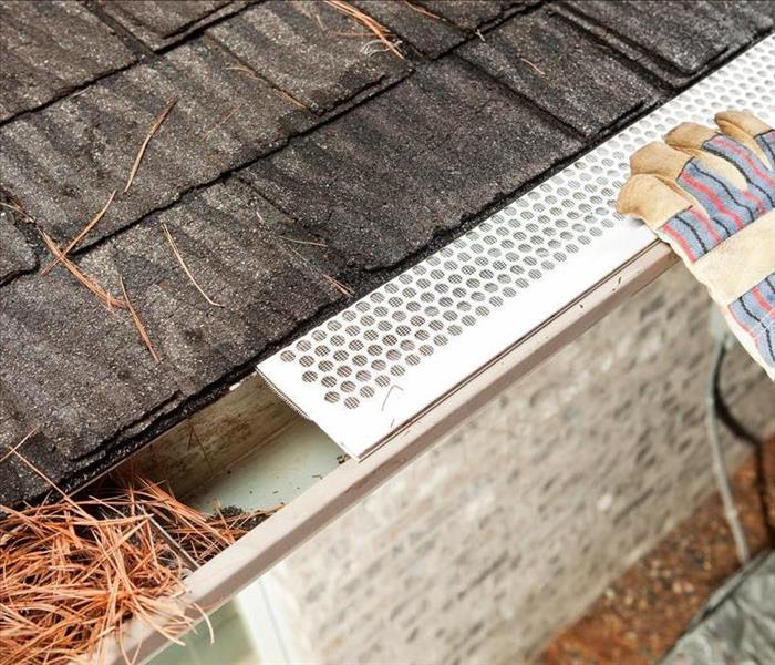 "Mold Remediation Don't ""Leaf"" Your Gutters Alone, Prevent Water and Mold Damage to Your Silverton Roof and Home"