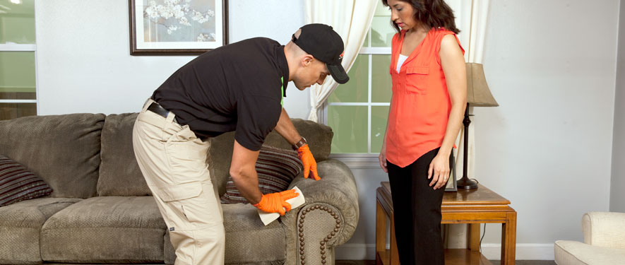 Archuleta County, CO carpet upholstery cleaning