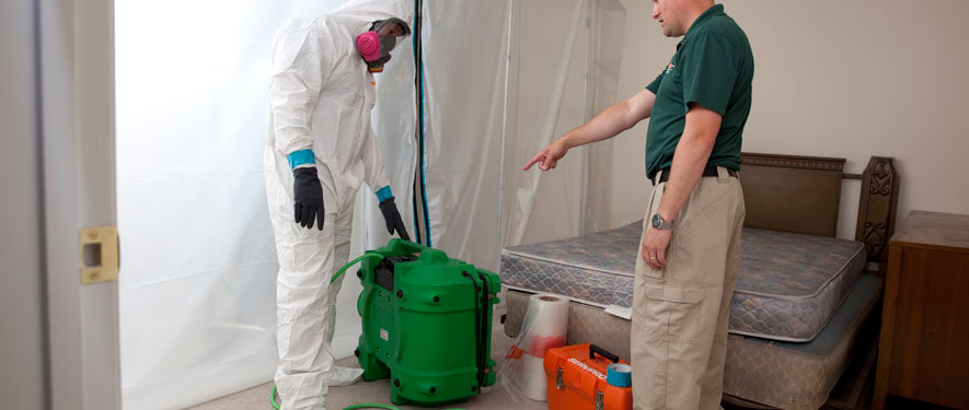 Durango, CO mold removal process